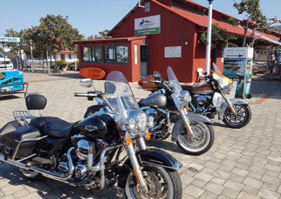 Harleys in Hermanus