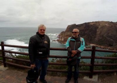 Windswept at Knysna Heads